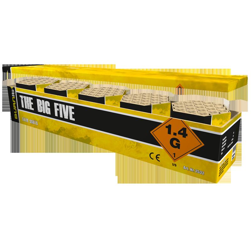 Burn It - Big five box