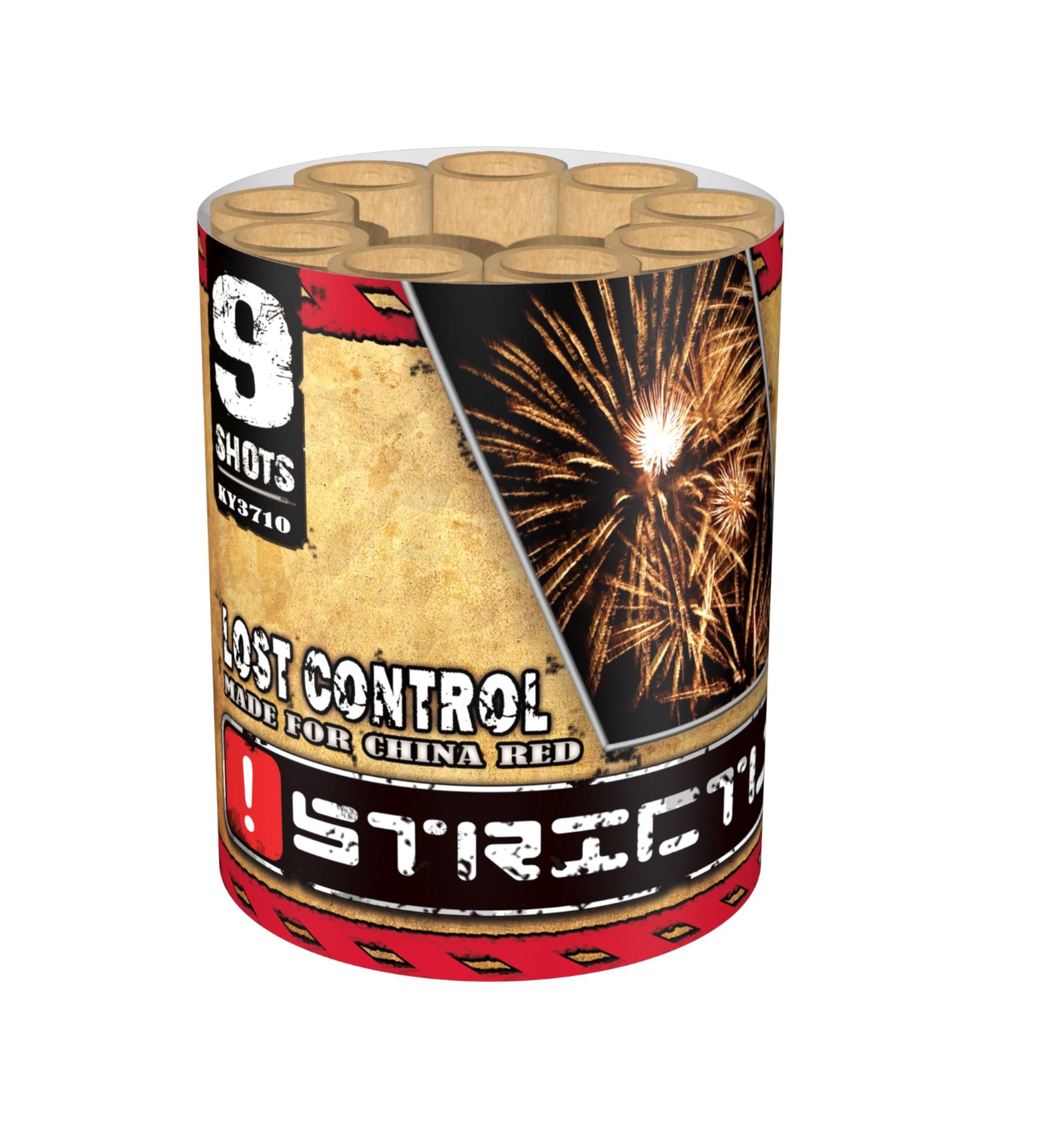 ART. 3710 LOST CONTROL, 9 SHOTS