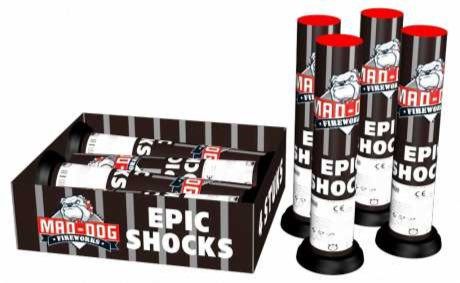 ART. 2323 EPIC SHOCKS