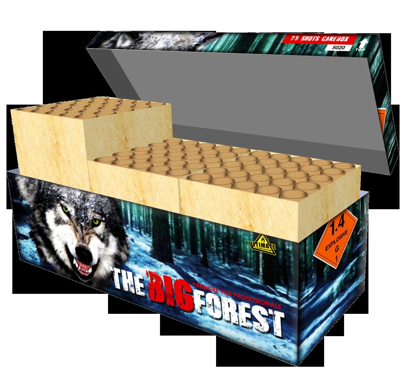 Big Forrest