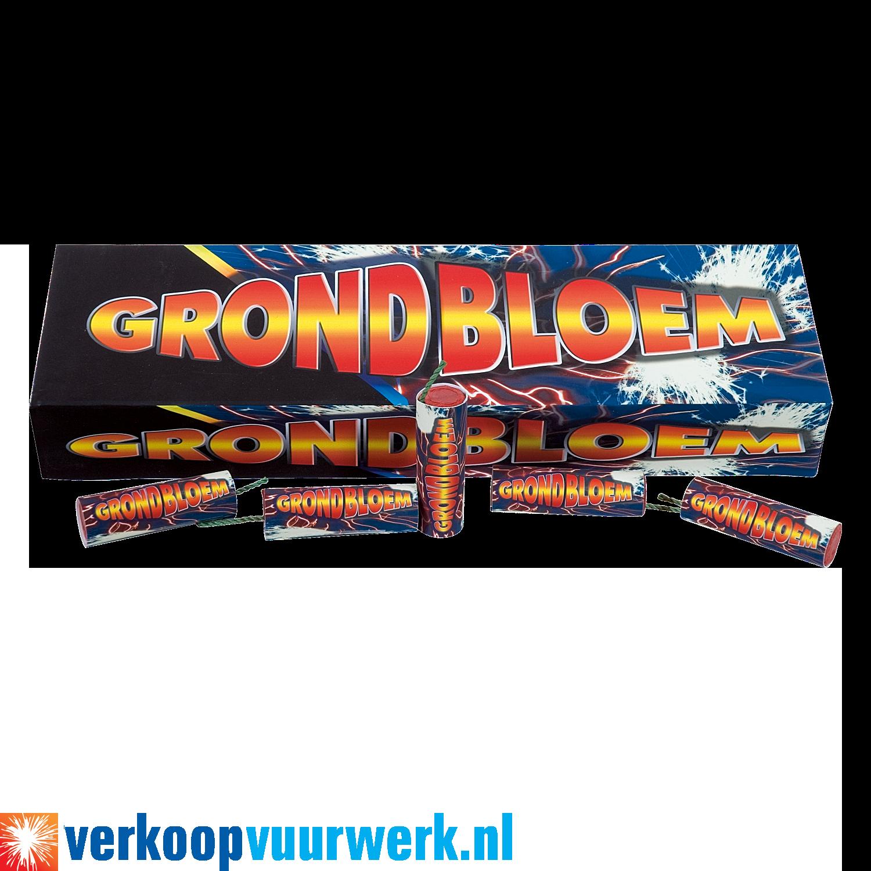 Grondbloem verkoopvuurwerk.nl
