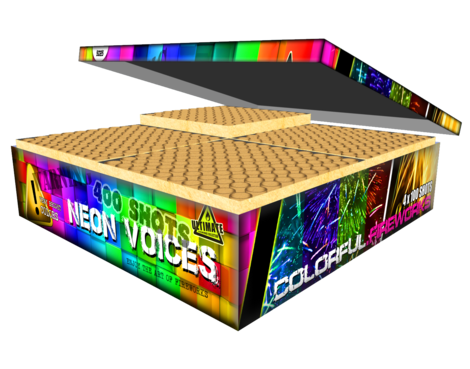 Neon Voices Box