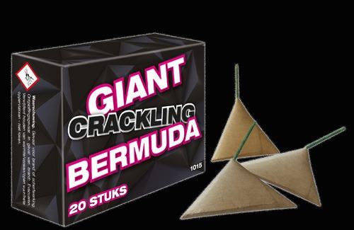 Giant Crackling Bermuda 20 stuks