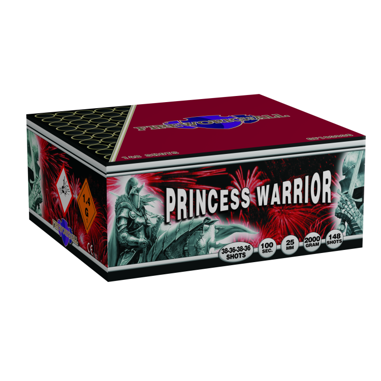 Princess Warrior