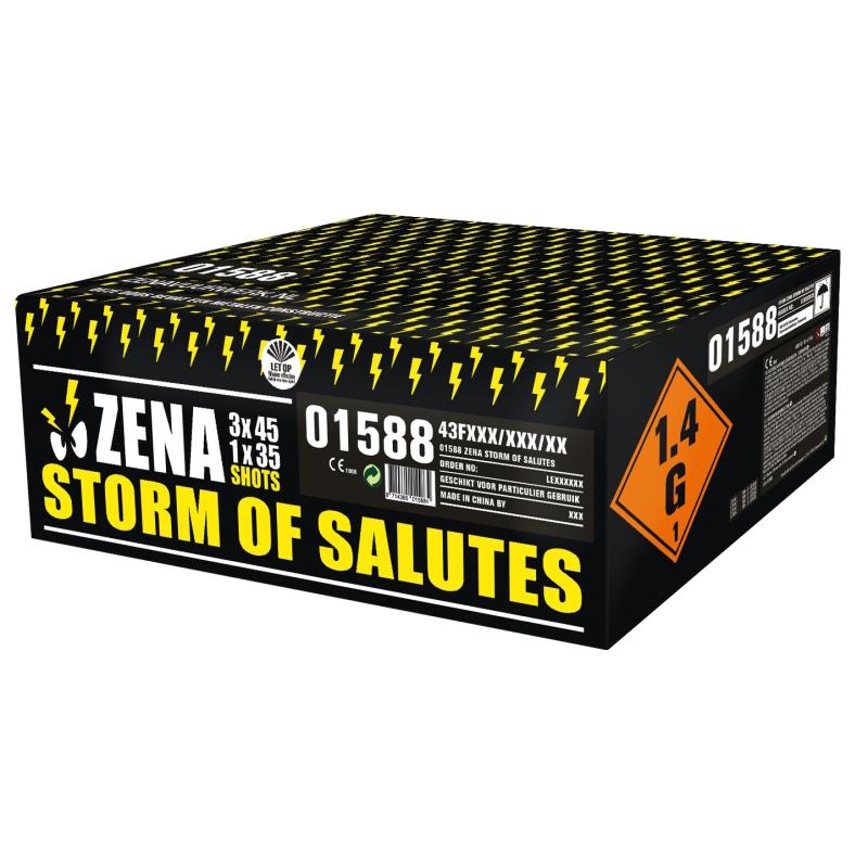 Zena Storm of Salutes