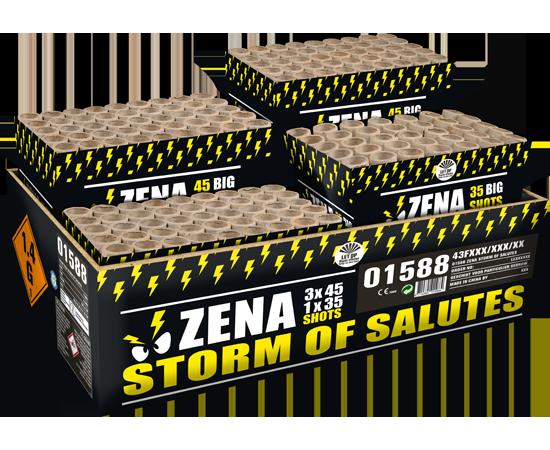 Zena storm of salutes*
