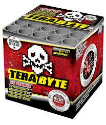 Terabyte 25 Schuss