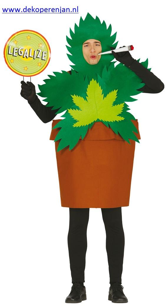 Marihuana plant pak Maat L