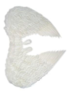 Engelen vleugels wit veren 60x75cm