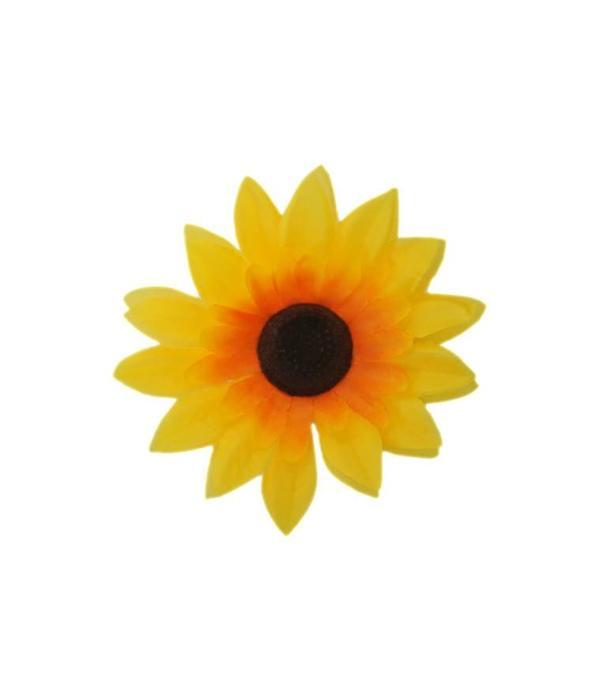 zonnen bloem hippie