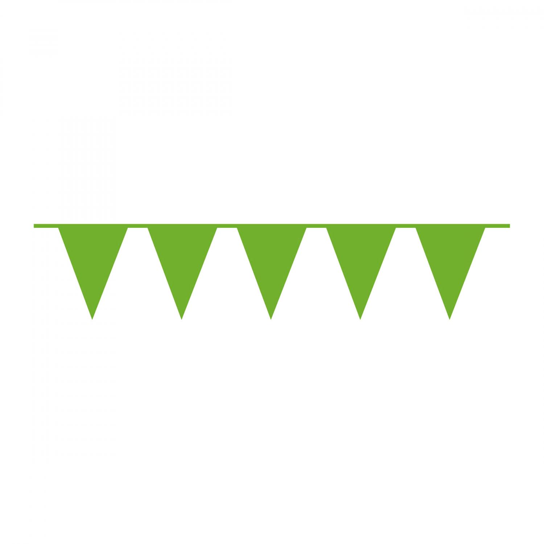 vlaggenlijn kiwi groen 10m