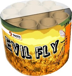 Evil Fly