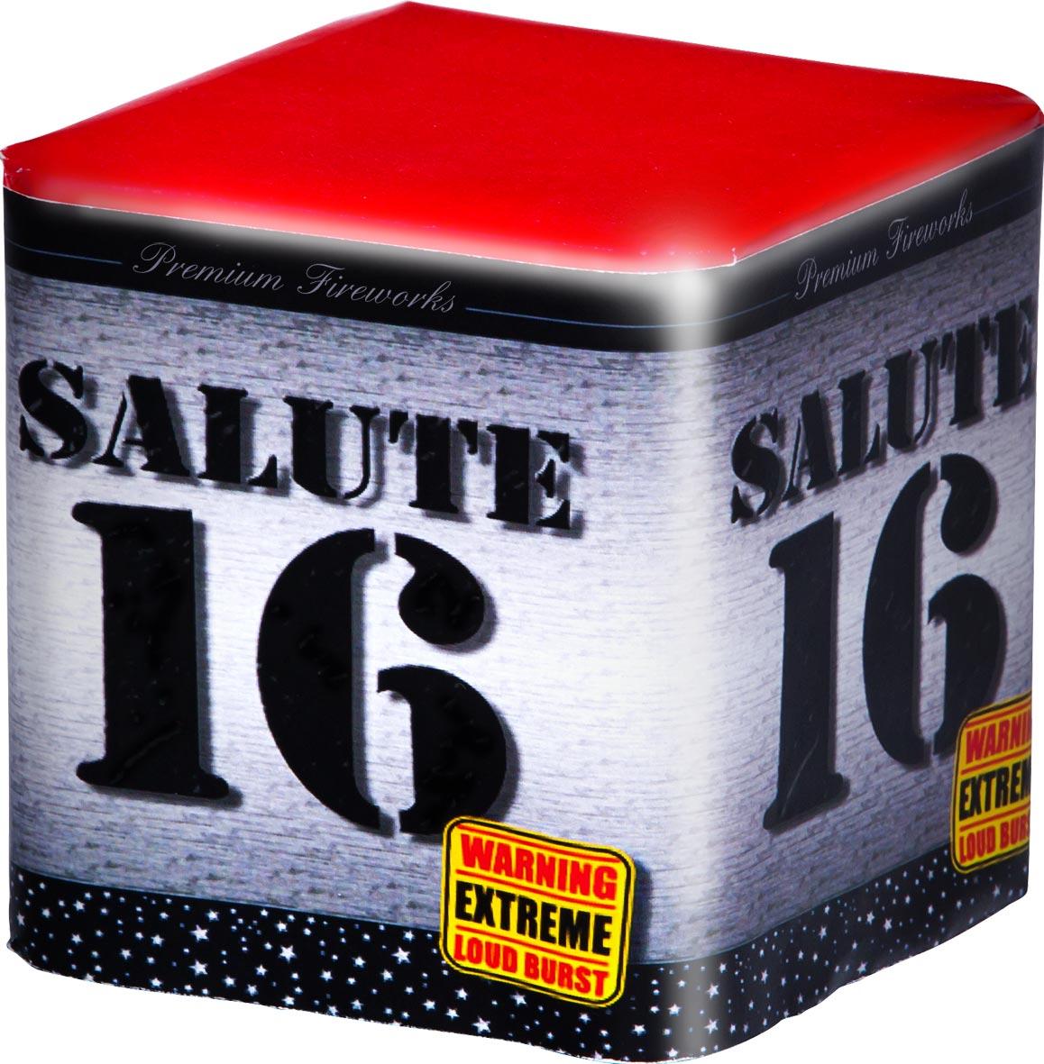 Salute 16 knalcake met 16 shots intratuin lochem for Intratuin lochem