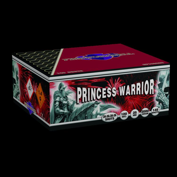 Princess Warrior [new]
