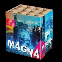 MAGNA 12 schoten