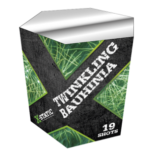 Twinkling Bauhinia * Nieuw*