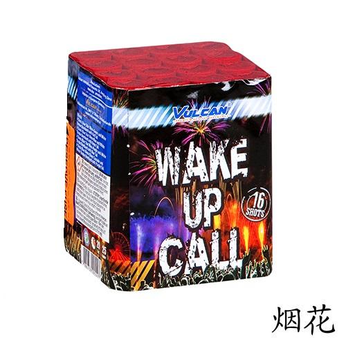 Wake Up Call 16's