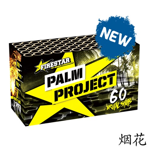 Palm Project Box