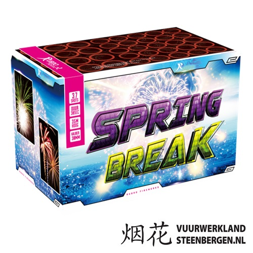 Spring Break Box*
