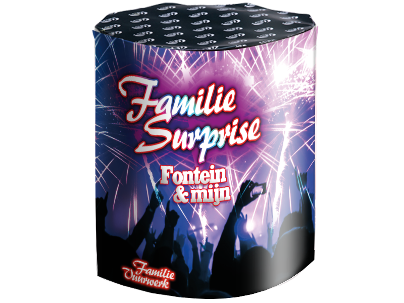 Family Surprise