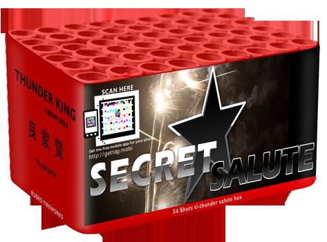 Secret Salute