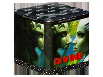 Dynasty Divine