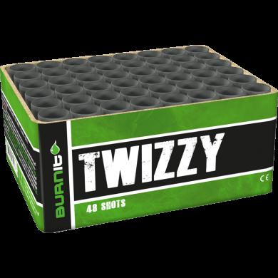Twizzy