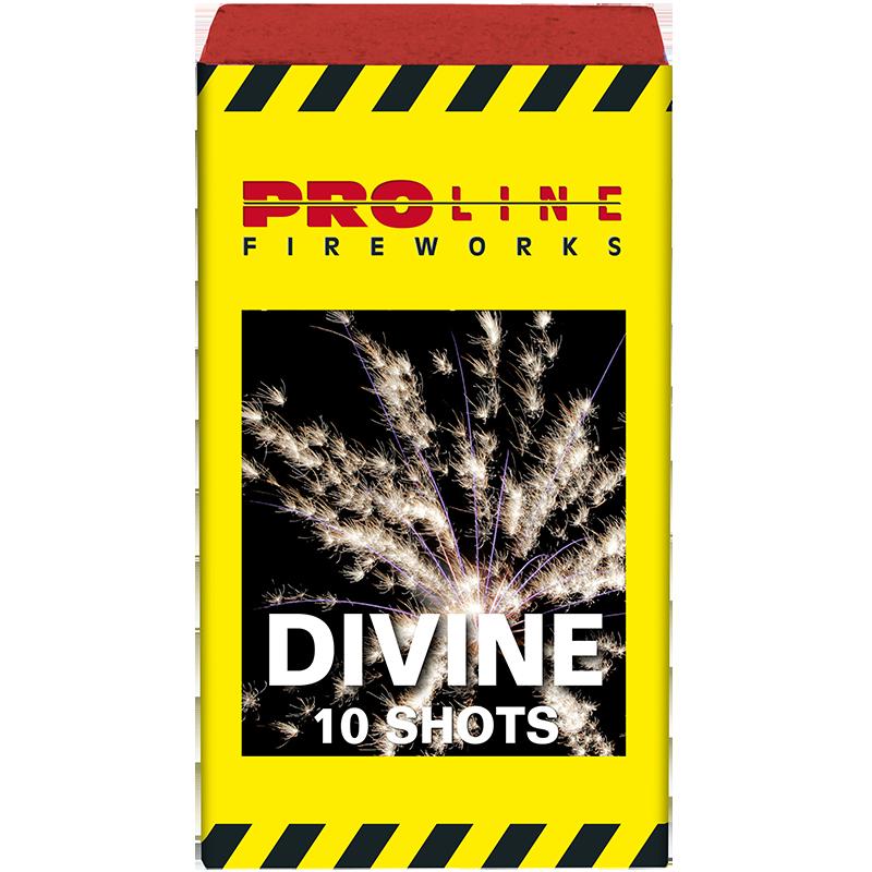 Divine - 10 shots cake