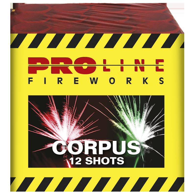 Corpus - 12 shots cake