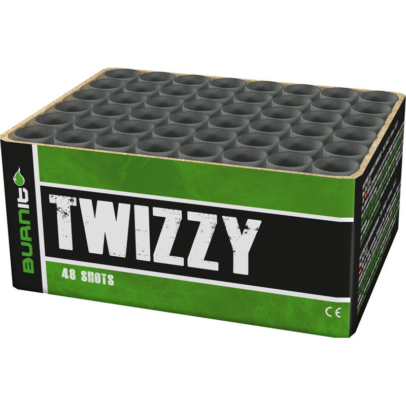 Twizzy Burn it