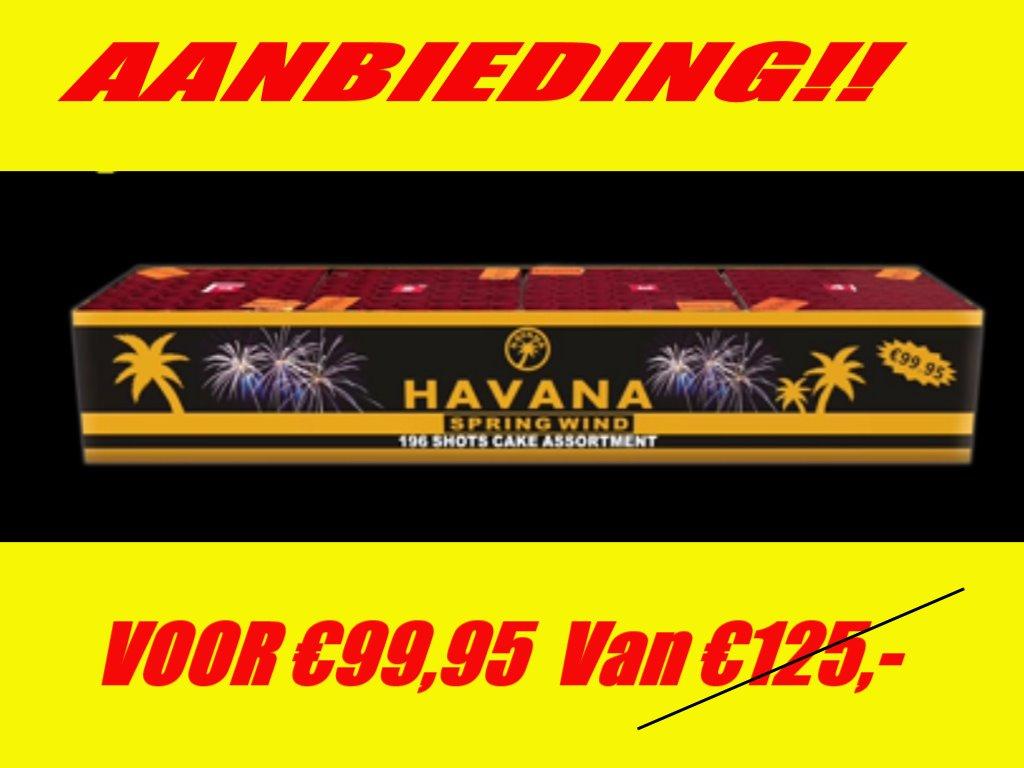 Havana Springwind