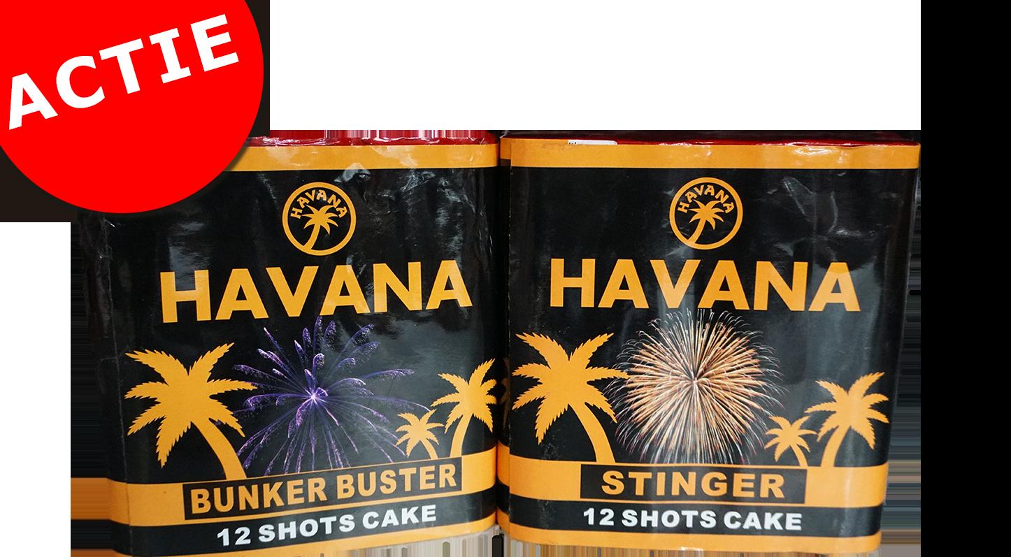 Havana 12 shots cake