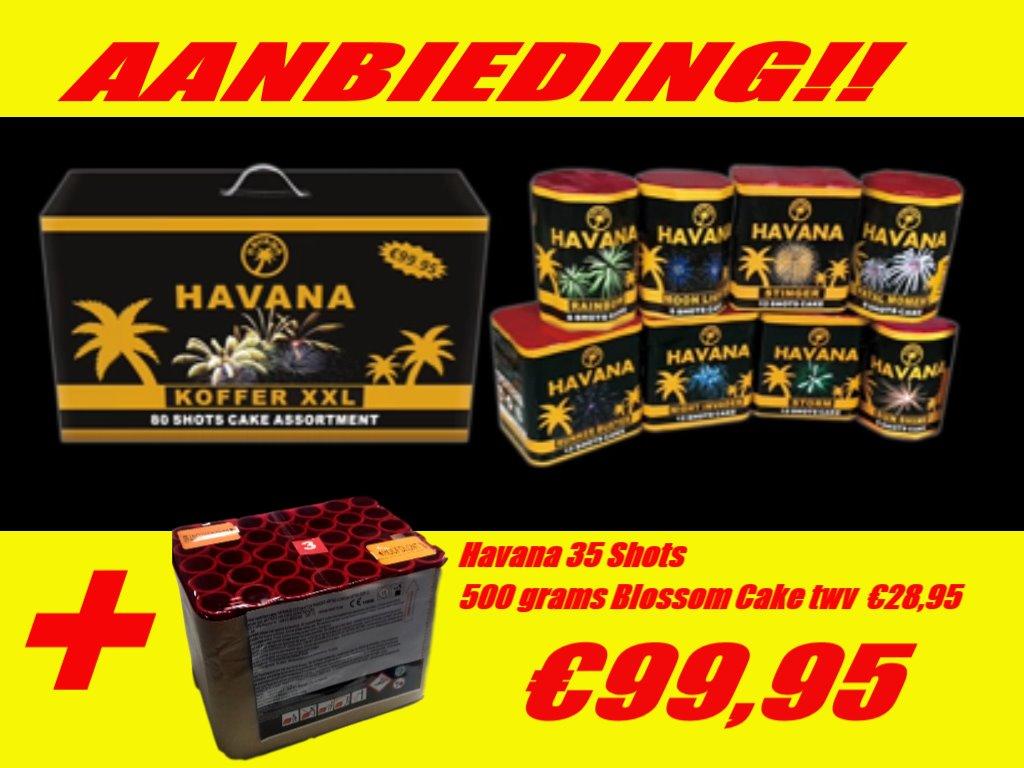 Havana XXL Koffer met Blossom Cake