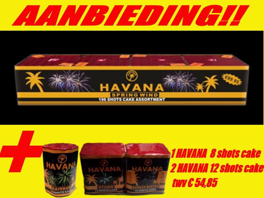 Havana Springwind met havana 8 shots & 2 x 12 shots cake