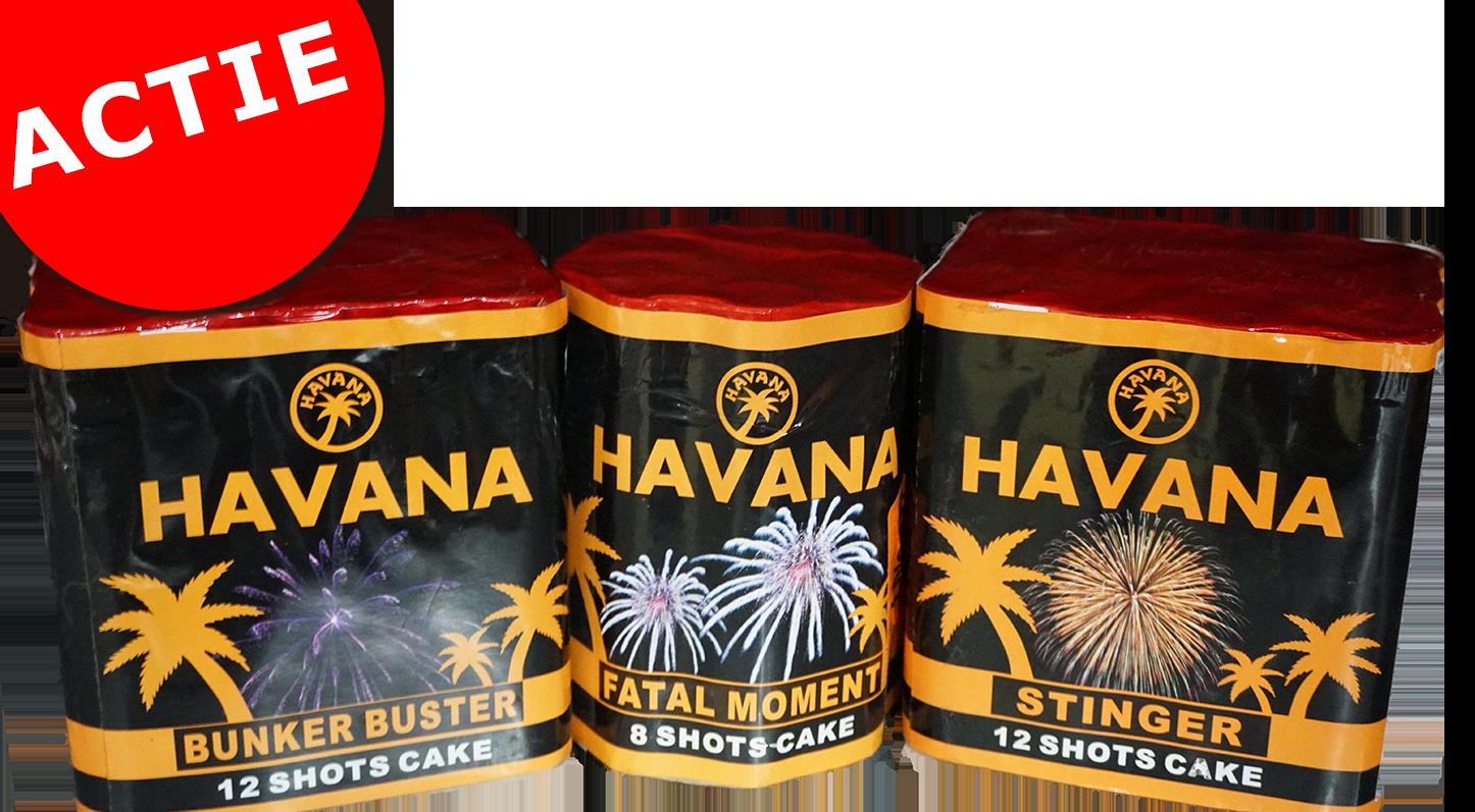 HAVANA 2x 12 SHOTS + 8 SHOTS