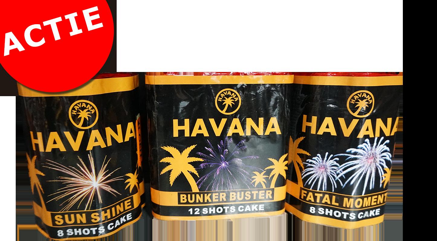HAVANA 2X 8 SHOTS + 12 SHOTS